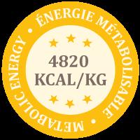 Quantité énergie